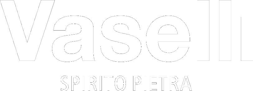 Vaselli Logo white png